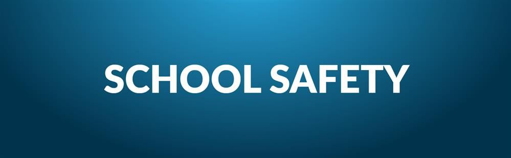 Image result for School Safety